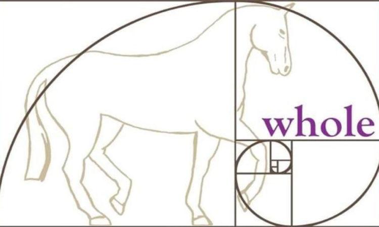 Una visione olistica del cavallo
