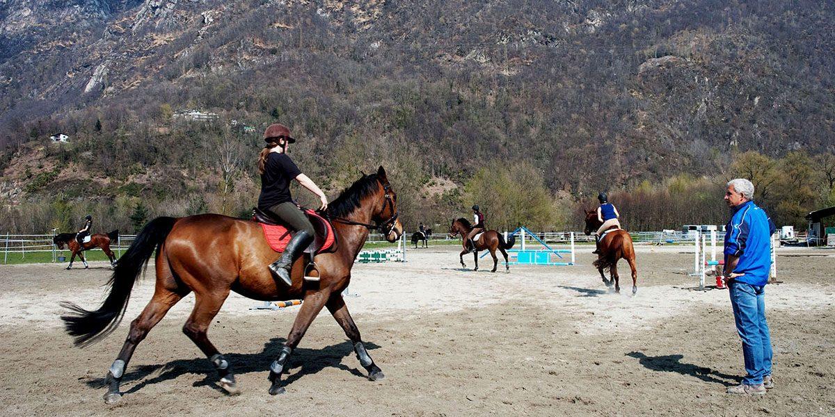 Calendario Regionale Salto Ostacoli.Ftse Federazione Ticinese Sport Equestri